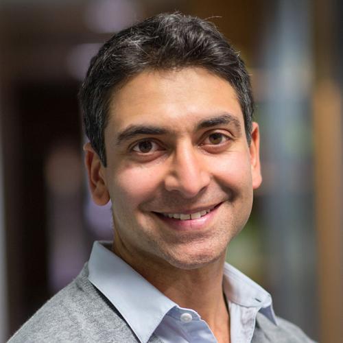 Ajay Gambhir, Consultant